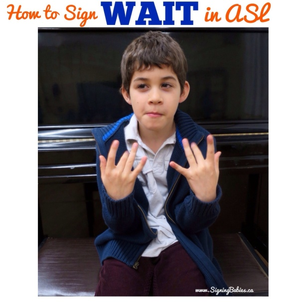 How to sign WAIT in American Sign Language (www.signingbabies.ca)