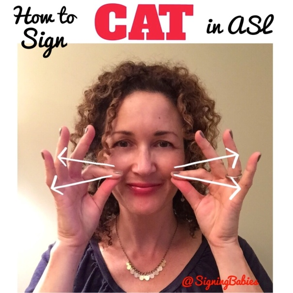 How to Sign CAT in ASL. www.growingsigns.com