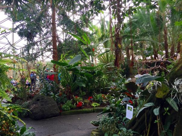 Inside Bloedel Conservatory  --www.growingsigns.com